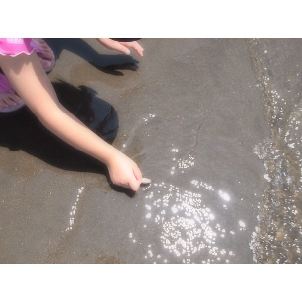 #Play to pick up the #shell. #kids #sea #beach