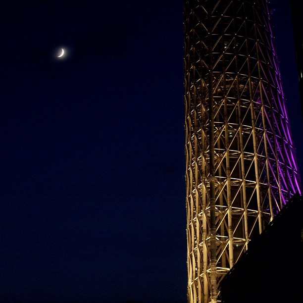 Modest Universe / #moon #skytree