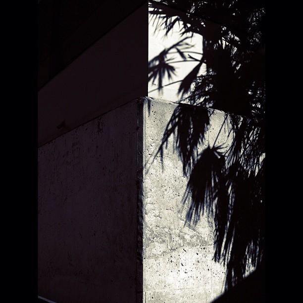Concrete #bw #blackwhite #monocrome