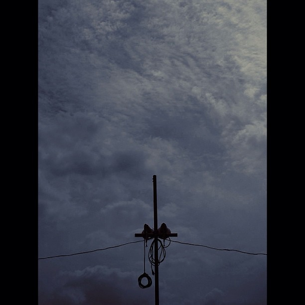 Cloudy / #bw #blackandwhait #monochrome