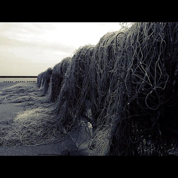 Fishing net / #bw#blackwhite#blackandwhite#monochrome