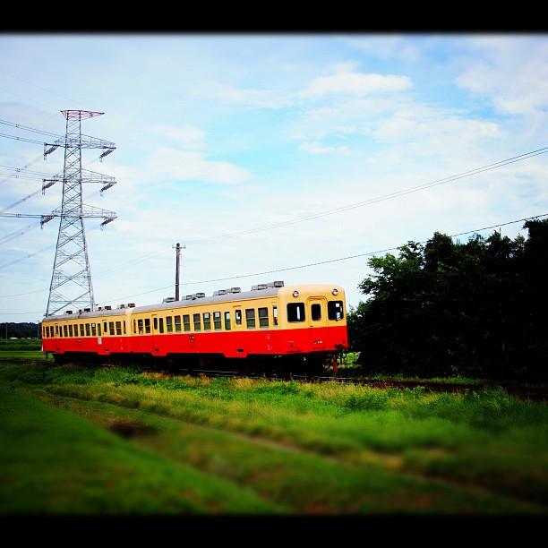 Local Train / #train