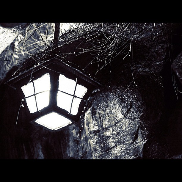 Lamp / #bw #blackandwhait #monochrome