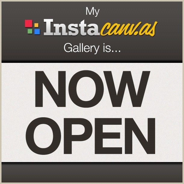 I was able to open the Instacanvas gallery!