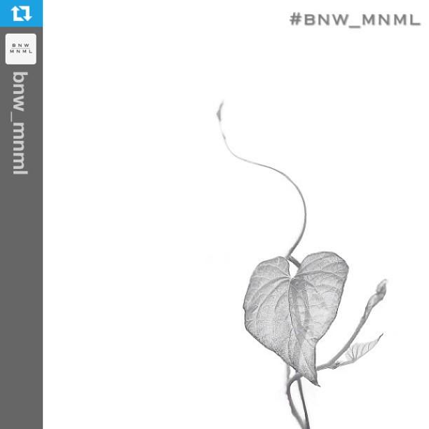 BNW_MNML highlight