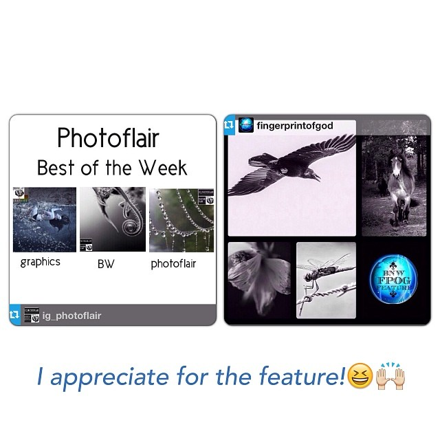 IG_Photoflair and Fingerprintofgod FEATURE!