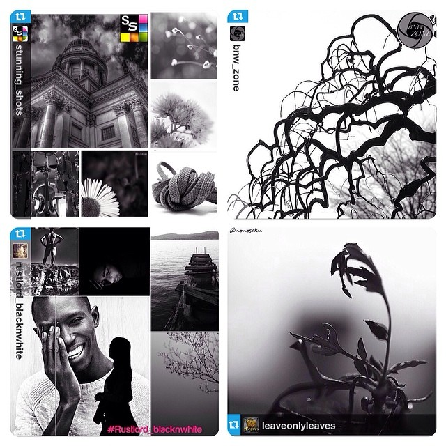 Stunning_Shots and Bnw_Zone and Rustlord_Blacknwhite and LeaveOnlyLeaves FEATURE!