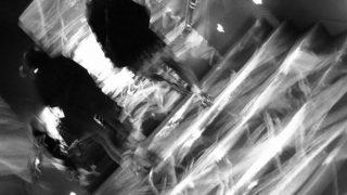 Unadjusted music…..#worldcaptures #royalsnappingartists#myighub #Bnw_captures #bnw_fabulous #all_bnwshots #sombrebw #friendsinbnw #Rsa_bnw #Rustlord_unity #bnw_lombardia_member #modefinedbw #insta_pick_bw  #pr0ject_bnw #trb_bnw #tgif_bnw #foto_blackwhite #dof_addicts #great_bnw_nature #bnw_sweden #igs_bnw #Thehub_bnw #fingerprintofgod #naturehippys_ #Nature_brilliance_bnw #GrammerCollective #bwgrammer #bewitched_flowers
